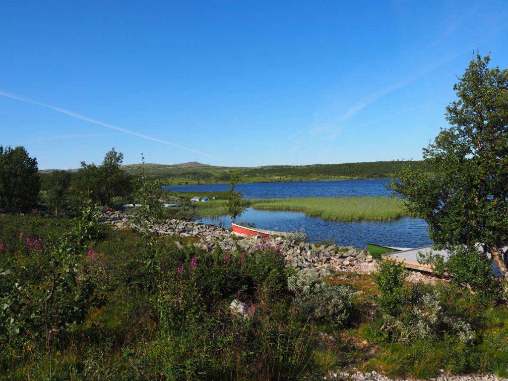 Typische norwegische Landschaft